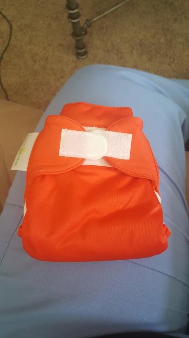 bumgenious cloth diaper